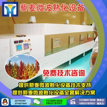 海鲜制品烘烤机    微波对虾快速烘烤设备  微波设备